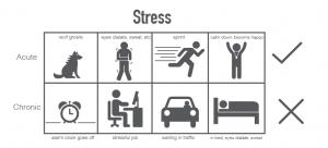 Acute stress vs chronische stress